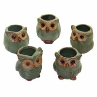 cute owl crafts بالجملة-5pcs creative mini owl flowerpots For Fleshy Plants