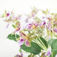 impatiens çiçek toptan satış-Yeni Impatiens Şube Yapay Çiçekler Ipek Flore Ev Düğün Dekorasyon Için Sahte Çiçek Orkide Fleur Artificielle