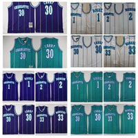ingrosso ricamo pallacanestro jersey curry-Pullover di pallacanestro Mens Vintage 30 # Dell Curry Muggsy Bogues 1 Charlotte Hornets 33 # Alonzo Mourning Camicie Larry Johnsond ricamo
