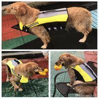 ingrosso giacca gialla cane-Nuovo giubbotto salvagente flottante giallo per cani Giubbino salvagente durevole regolabile Giubbotto antipioggia in poliestere poliestere resistente all'acqua