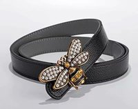 cinturón trenzado mujer al por mayor-2018 cinturón de mujer de calidad superior cinturones de mujer de moda de alta calidad de plata hebilla de mariposa Elástico trenza mujer cinturón
