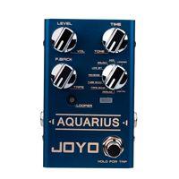 Wholesale effect pedal looper for sale - Group buy JOYO R AQUARIUS Electric Guitar Effect Pedal Processor Delay Digital Simulation Looper Effects Accessories Musical Instrument