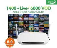 android media player iptv großhandel-IPTV Arabisch Dalletektv Android 6.0 Smart-IP-TV-Box TV-Empfänger Arabisch IPTV Europe Französisch IPTV-Box 1 Jahr QHDTV Code Media Player