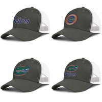 Wholesale ventilation cap for sale - Group buy Men s Mesh Hat Florida Gators primary team logo Women s Summer Ventilation baseball Caps football Round Logo Gay pride rainbow