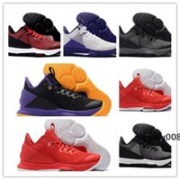 Wholesale sport netting for shoes resale online - 2020 New James Witness IV Lakers Black Purple Yellow Basketball Shoes For Mens Net Surface Cheap Sale Sports Sneakers Trainers Size
