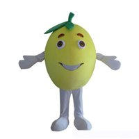 Wholesale carnival costume fruits for sale – halloween 2019 Discount factory sale Fruit Grapefruit Costume Outfits Adult Women Men Cartoon Mascot costume For Carnival Festival Commercial Activity