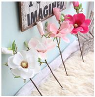 Decorazioni Natalizie Con Foglie Di Magnolia.Vendita All Ingrosso Di Sconti Piante Di Magnolia In Messa