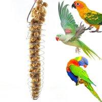 lebensmittelspitzen großhandel-Permanent Purple Edelstahl Papagei Birdie Food Basket kann Hirse Spike Obst Gemüse Futtersuche Orgel Papagei Spielzeug