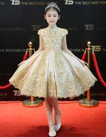 pembe tafta elbisesi çiçek toptan satış-Güzellik Şampanya Aplike Boncuk Diz kızın Pageant elbise Çiçek Kız Elbise Prenses Parti Elbiseler Çocuk Etek Custom Made 2-14 H309040