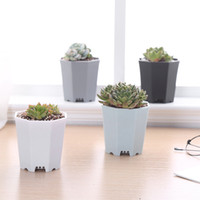 Wholesale MOQ Small Colorful Plastic Succulent Grow Pot Sturdy Cutting Seeds Flower Nursery Starter Pot Planter quot