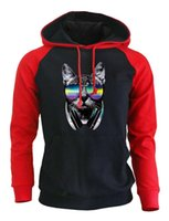 шерсть для хот-дог оптовых-2017 New Hot Sale Autumn Winter Fleece Sweatshirt Men  Raglan Hoodies Male Streetwear THE DJ BY DOG CRAZY Punk Kpop Hoody