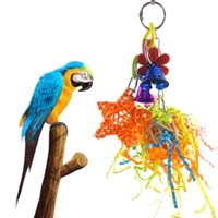 ingrosso gruppo giocattolo-Parrot Bird Toys Parrot Gnaw Destruction Class Toys In Riotous Profusion Will Color Ball Group Hair