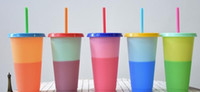 710ML Thermochromic Cup Plastic Color Change Mug Candy Colors Reusable Drinking Tumblers with Lid and Straw LLFA