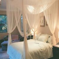 böcek gölgelik toptan satış-Yüksek Kalite Sıcak 1 adet Zarif Dantel Böcek Yatak Canopy Netleştirme Perde Dome Cibinlik Dünya Çapında 4 Kapılar için Açık yatak