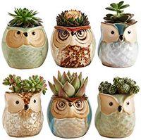Wholesale plant flowers for sale - Group buy Owl Pot Ceramic Flowing Glaze Base Succulent Plant Pot Cactus Flower Pot Container Planter Bonsai Pots with A Hole Perfect