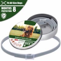 köpek pire yaka toptan satış-Köpek Yaka Anti Pire Sivrisinekler Keneler Böcek Su Geçirmez Bitkisel Pet Yaka Küçük Orta büyük köpekler için 8 Ay Koruma Köpek Aksesuarları