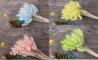 ingrosso fiori secchi di nozze-New Décor 20 steli Fiori secchi naturali Colorful Lagurus Ovatus Bouquet di fiori reali per la decorazione di nozze a casa Mazzo di erba di coda di coniglio