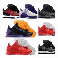 Wholesale sport netting for shoes for sale - Group buy 2020 New James Witness IV Lakers Black Purple Yellow Basketball Shoes For Mens Net Surface Cheap Sale Sports Sneakers Trainers Size