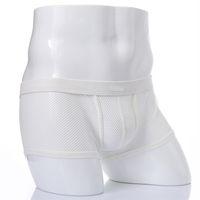 alçak irtifa boksör özetleri toptan satış-Erkek Seksi Iç Çamaşırı Boxer Külot Low Rise See-through Bulge Kılıfı Külot Lingerie Boxer Şort Mesh Erkek Külot Oymak siyah Beyaz