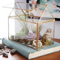 terrarium hediye toptan satış-Modern Stil Düzensiz Cam Vazo Geometrik Etli Saksı Vazo Kutusu Teraryum Konteyner Büyük Hediye