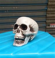crâne en plastique achat en gros de-Décorations d'Halloween Crâne Prop Simulation Effrayante Crâne En Plastique Décor Crâne Squelette Props pour Party Haunted House Roombreak Bar JK1909