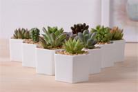Wholesale mini nursery pots resale online - 2019 ceramic bonsai pots mini white porcelain flowerpots suppliers for seeding succulent indoor home Nursery planters