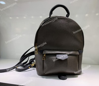 Wholesale Backpack - 19 Wholesale Genuine Leather Women's Palm Springs Mini Backpack 41562 Multifunction Student Double Shoulder Bags Grade Design Backpack 41560