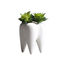 lua nova luz pendant venda por atacado-Tooth Forma desktop cerâmicos plantas suculentas Pot Modern Design Mini plantador potenciômetros de flor Vaso Decor C19041901