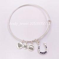 Wholesale horseshoe bangles resale online - Authentic Sterling Silver pendants Crystal Horseshoe Charm Bangle Rafaelian Silver Fits European bear Jewelry Style Gift