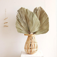 Wholesale window fans resale online - 1pc Palm Fan Leaf Dried Flower Palm Leaf Window Reception Party Art Wall Hanging Decoration Wedding Arch Arrangement