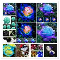 100 Pieces Rare Black White Desert Rose Seeds Adenium Obesum Flower Perennial Exotic Plants Flower Seeds Bloom Balcony Garden Yard