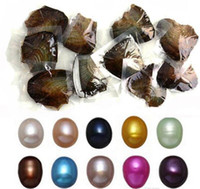 NEW Oysters With Dyed Natural Pearls Inside Pearl Party Oysters In Bulk Open At Home Pearl Oysters With Vacuum Packaging Epacket