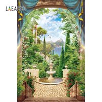 фотобанк фототаймс оптовых-Laeacco Tropical Garden Flower Vine Fountain Mountain Tree Пасмурная Scenic фотография Background Фотография фоны для Photo Studio