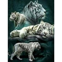 Wholesale paintings white tigers for sale - Group buy Diy Diamond Painting Cross Stitch Kits D Diamond Embroidery Animal white tiger Home Decor Full Square Diamond Mosaic Pictures