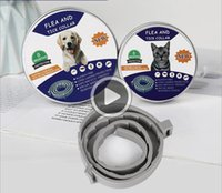 Wholesale dog flea collar resale online - Seresto Flea and Tick Collar for Dogs and cats Month Tick and Flea Control Nick X1H9