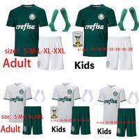 Wholesale men melo for sale - Group buy 2021 Palmeiras Man Female Kids socks soccer jersey MOISÉS Willian Deyverson FELIPE MELO Dudu footballl shirt camiseta de futboll