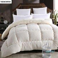 Wholesale wool duvets resale online - Wool lhair warm winter wool quilt thicken comforter duvet blanket Lamb Down Fabric filling king queen size
