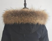 Wholesale parka scarf for sale - Group buy Real Raccoon Fur Collar Scarf For Women Down and Parka Dedicated Collar Fashion