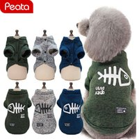 Wholesale kitty cat hats for sale - Group buy Winter Pet Puppy Dog Clothes Hoodies For Small Medium Dogs Cats Kitten Kitty Cute Cat Clothing Outfits Coats Jaet Costumes Y