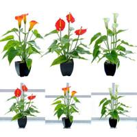 Wholesale common potted flowers for sale - Group buy Simulation Plant Bonsai Artificial Flower Common Callalily Green Plant Landscape Flower Pot Planter Garden Decor
