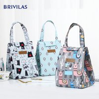 Wholesale women lunch bags for sale - Group buy Brivilas cooler lunch bag fashion ctue cat multicolor bags women waterpr hand pack thermal breakfast box portable picnic travel