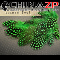 Wholesale China Led Earrings - Leading Supplier China ZP Crafts Factory 500pcs lot Fantastic Earring Decoration Kelly Green Polka Dot Guinea Fowl Feathers