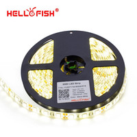 Wholesale White Tape Fish - Hello Fish 5m 5050 300 SMD IP65 Waterproof LED strip,12V flexible 60led m LED tape, white warm white blue green red yellow RGB