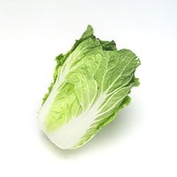 Wholesale Meat Bags - Vegetable seeds break off cabbage seeds cabbage Petiole white fresh meat flavor fragrance 10 grams   bag