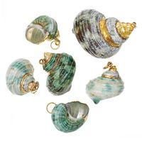 Wholesale Snail Pendant - Dorabeads Shell Charm Pendants Conch Sea Snail Green 4.6cm x 3.4cm-2.8cm x 2.2cm,5 PCs