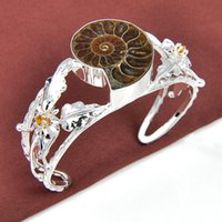 Wholesale 3PCS Wedding Gift Classic Natural Ammonite Fossil Gemstone Sterling Silver Plated Bracelet Bangle Russia Bracelet Jewelry