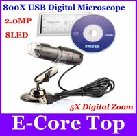 Wholesale High Speed Digital Zoom Camera - Wholesale-2015 New Upgrade SMD 8LED 800X USB Microscope HD CMOS Sensor High Speed Endoscope Camera Magnifier 5X Digital Zoom Free Shipping
