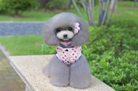 Wholesale Male Pink - DOG CLOTHES whoelsale pet apparel wool bear cotton coat pink color for male dog poodle Pomeranian papillon puppy dog