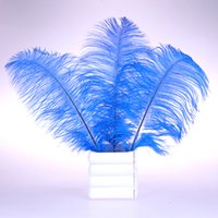 Wholesale Pretty Natural blue Ostrich Feathers inch Long Wedding Birthday Christmas Decorations