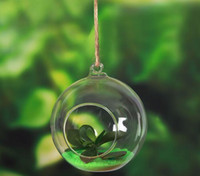 Wholesale Hanging Clear Glass Candle Holder - 100PCS lot Tea Light Holder 80MM Glass Air Plant Terrariums Hanging Glass Orb Candle Holder For Wedding Candlestick SL5089
